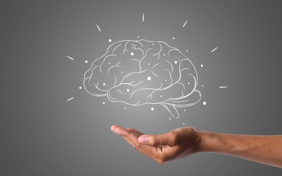 Trening pamięci i efektywnego uczenia się